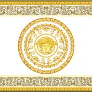 Подушка Versace (11052) -