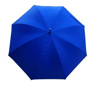 Зонт Alexander McQueen - Зонт Alexander Mcqueen 5000 руб.-23b.jpg